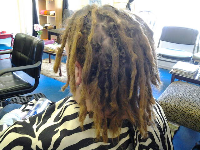 Pleasing Interlocking Dreads Caucasian Dreads Hairstyle Inspiration Daily Dogsangcom
