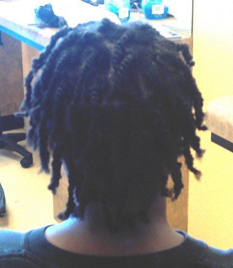 Natural 2 Strand Twists I did