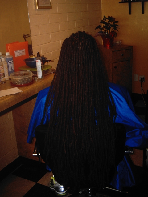 Very Long Dreads I did