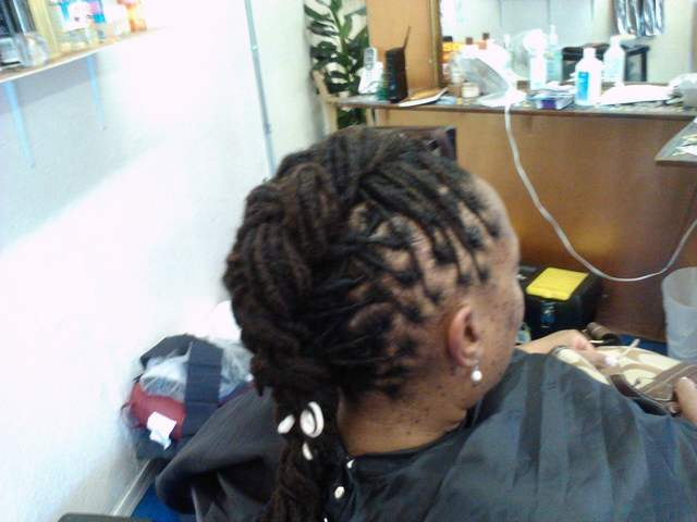 french braids locs i did